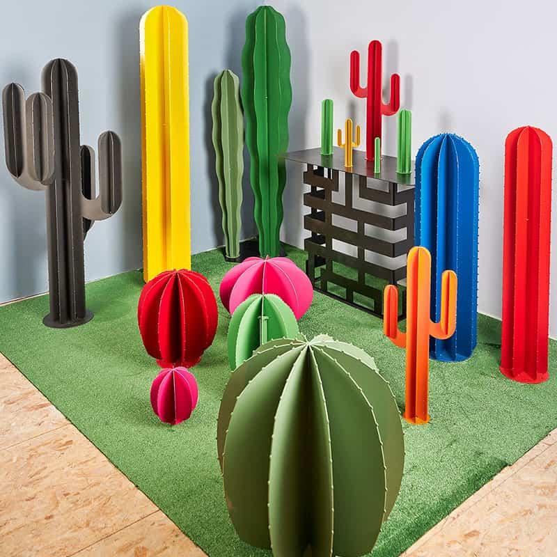 ensemble cactus couleur dimensions différentes
