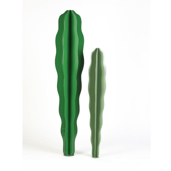 cactus dimensions différentes métal
